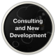 Consulting and New Development