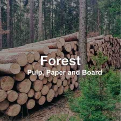 .FOREST, PULP & PAPER